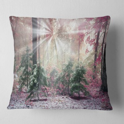 Forest with Sun Rays Landscape Photo Pillow Size: 18 x 18, Product Type: Throw Pillow