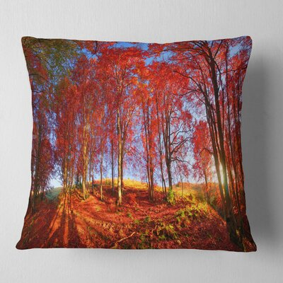 Forest in Carpathians Landscape Photography Pillow Size: 18 x 18, Product Type: Throw Pillow