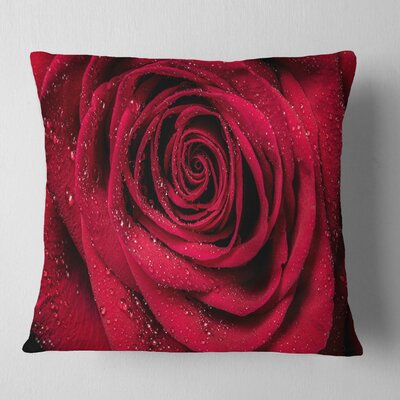 Rose Petals with Rain Droplets Floral Pillow Size: 18 x 18, Product Type: Throw Pillow