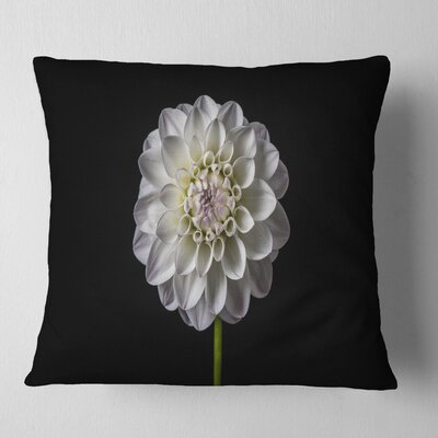 Isolated Dahlia Flower in Floral Pillow Size: 18 x 18, Product Type: Throw Pillow