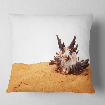Large Sea Shells on Sand Seascape Pillow Size: 16 x 16, Product Type: Throw Pillow
