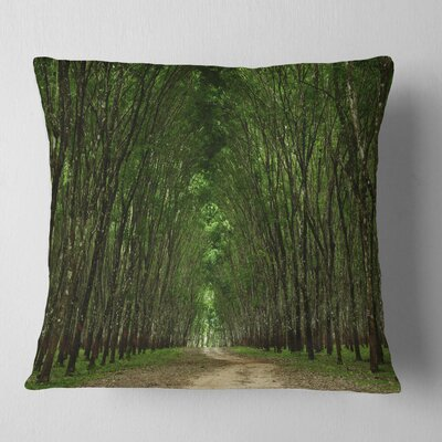 Pathway in Thick Forest Landscape Photography Pillow Size: 16 x 16, Product Type: Throw Pillow
