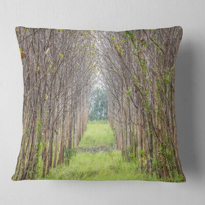 Pathway Through Fall Trees Landscape Photography Pillow Size: 18 x 18, Product Type: Throw Pillow