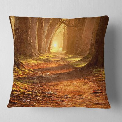 Magic Morning at the Fall Park Landscape Photography Pillow Size: 16 x 16, Product Type: Throw Pillow