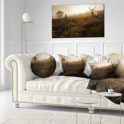 Mist Forest with Deer Stag Landscape Photo Throw Pillow Size: 16 x 16