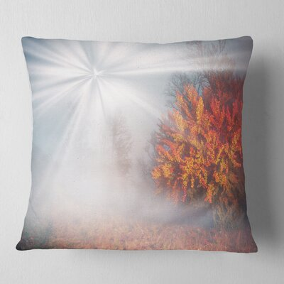 Misty Sun in Autumn Forest Landscape Photography Pillow Size: 16 x 16, Product Type: Throw Pillow