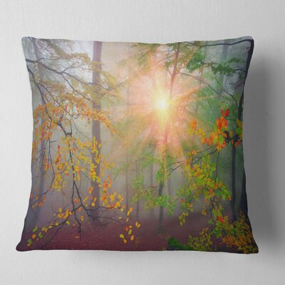 Morning in Misty Forest Landscape Photo Pillow Size: 26 x 26, Product Type: Euro Pillow