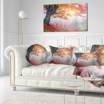 Morning in Misty Forest Landscape Photo Throw Pillow Size: 16 x 16