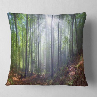 Morning Sun Rays in Carpathian Landscape Photography Pillow Size: 18 x 18, Product Type: Throw Pillow