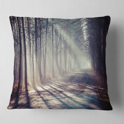 Morning Sunbeams to Forest Road Landscape Photography Pillow Size: 16 x 16, Product Type: Throw Pillow