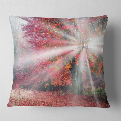 Mystical Light in Fall Forest Landscape Photography Pillow Size: 18 x 18, Product Type: Throw Pillow