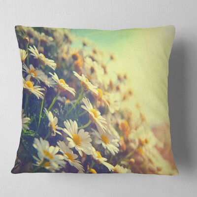 Nature with Blooming Chamomiles Floral Pillow Size: 26 x 26, Product Type: Euro Pillow