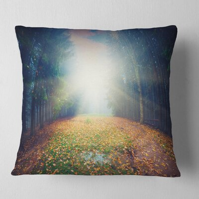 Rising Sun over Arched Forest Landscape Photo Pillow Size: 26 x 26, Product Type: Euro Pillow