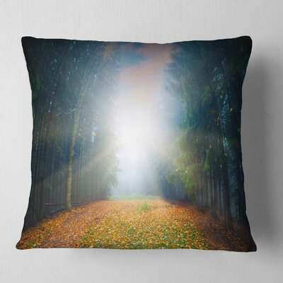 Rising Sun over Forest Landscape Photo Pillow Size: 16 x 16, Product Type: Throw Pillow