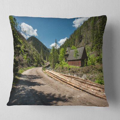 Road in Chocholowska Valley Landscape Printed Pillow Size: 16 x 16, Product Type: Throw Pillow