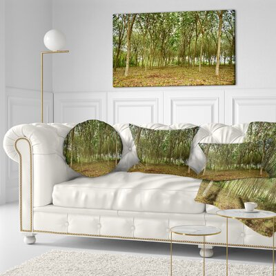 Rubber Tree Plantation During Midday Landscape Printed Throw Pillow Size: 16 x 16