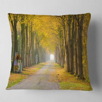 Country Road Below Trees Landscape Photography Pillow Size: 26 x 26, Product Type: Euro Pillow
