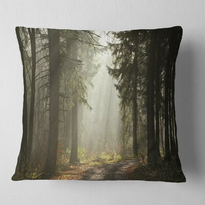 Forest with Sun Rays Landscape Photography Pillow Size: 18 x 18, Product Type: Throw Pillow