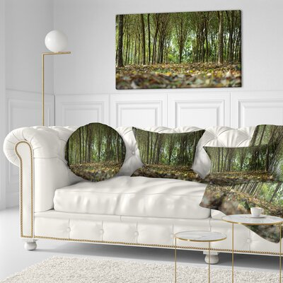 Dense Rubber Tree Plantation Landscape Printed Throw Pillow Size: 16 x 16