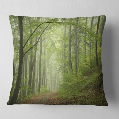 Early Fall Forest Landscape Photo Pillow Size: 16 x 16, Product Type: Throw Pillow