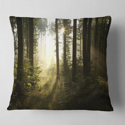 Early Morning Sun in Misty Forest Landscape Photography Pillow Size: 18 x 18, Product Type: Throw Pillow