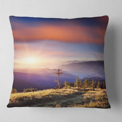 Fantastic Sunrise and Dead Tree Landscape Photo Pillow Size: 26 x 26, Product Type: Euro Pillow