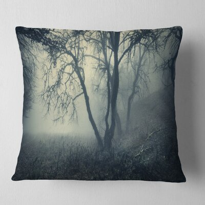 Forest in Morning Landscape Photography Pillow Size: 18 x 18, Product Type: Throw Pillow