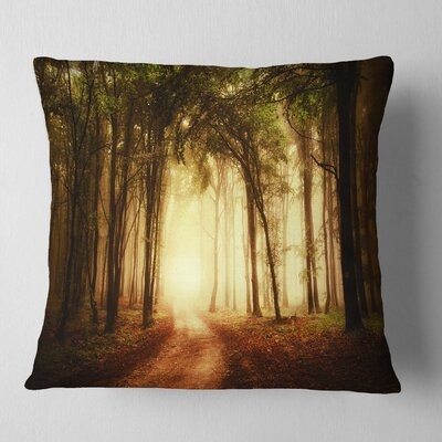 Forest in Fall Morning Landscape Photography Pillow Size: 16 x 16, Product Type: Throw Pillow