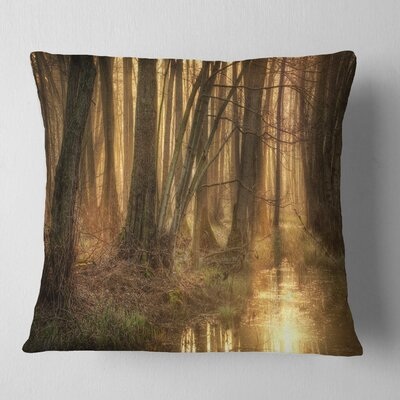 Morning in Dense Forest Landscape Photography Pillow Size: 18 x 18, Product Type: Throw Pillow