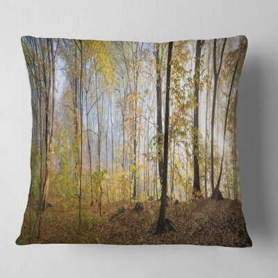 Autumn Forest in Morning Landscape Photography Pillow Size: 26 x 26, Product Type: Euro Pillow