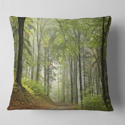 Beach Forest Pathway Landscape Photo Pillow Size: 18 x 18, Product Type: Throw Pillow