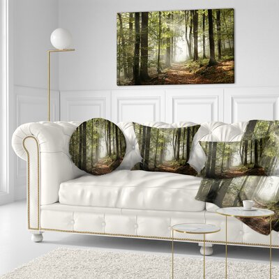 Fall Forest with Sun Rays Landscape Photography Throw Pillow Size: 16 x 16