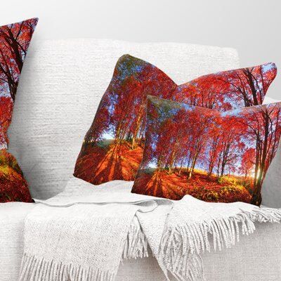 Forest in Carpathians Landscape Photography Pillow Size: 12 x 20, Product Type: Lumbar Pillow