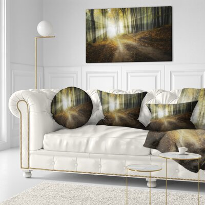 Bright Sun Rays in Fall Landscape Photo Throw Pillow Size: 16 x 16