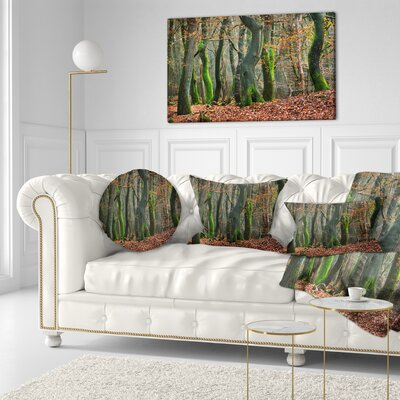 Autumn Forest in the Netherlands Landscape Photography Throw Pillow Size: 16 x 16