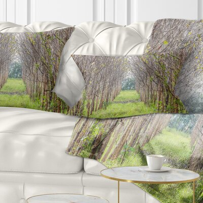Pathway Through Fall Trees Landscape Photography Pillow Size: 12 x 20, Product Type: Lumbar Pillow