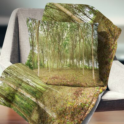 Rubber Tree Plantation During Midday Landscape Printed Pillow Size: 18 x 18, Product Type: Throw Pillow