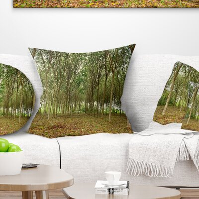 Rubber Tree Plantation During Midday Landscape Printed Pillow Size: 26 x 26, Product Type: Euro Pillow