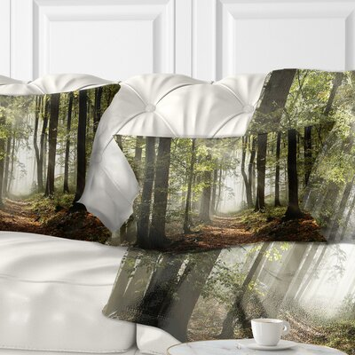 Fall Forest with Sun Rays Landscape Photography Pillow Size: 12 x 20, Product Type: Lumbar Pillow