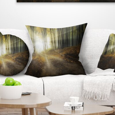 Bright Sun Rays Pilllow Size: 16 x 16, Product Type: Throw Pillow