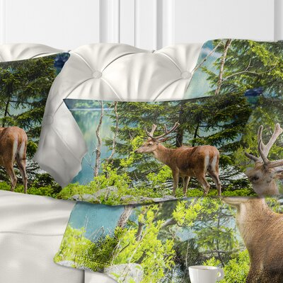 Deer Stag near the Lake Animal Pillow Size: 12 x 20, Product Type: Lumbar Pillow