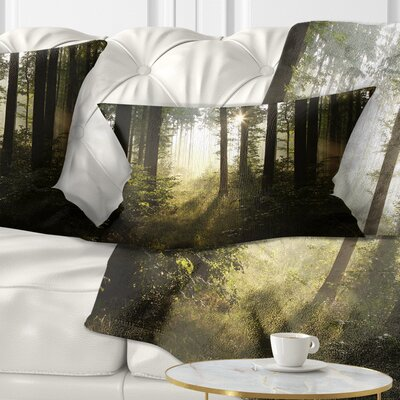 Early Morning Sun in Misty Forest Landscape Photography Pillow Size: 12 x 20, Product Type: Lumbar Pillow