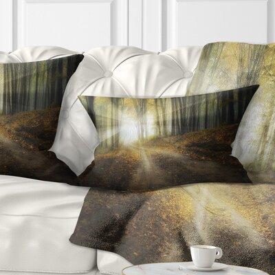 Bright Sun Rays Pilllow Size: 12 x 20, Product Type: Lumbar Pillow