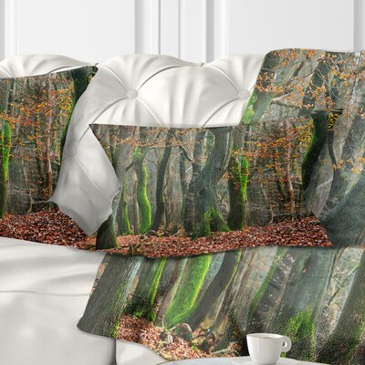 Autumn Forest in the Netherlands Landscape Photography Pillow Size: 12 x 20, Product Type: Lumbar pillow
