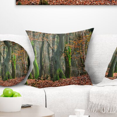 Autumn Forest in the Netherlands Landscape Photography Pillow Size: 18 x 18, Product Type: Throw Pillow