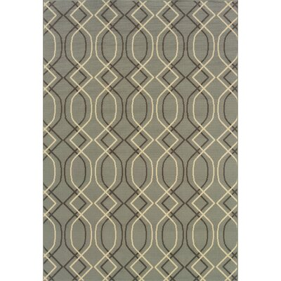 Milltown Blue/Grey Indoor/Outdoor Area Rug Rug Size: Rectangle 37 x 56