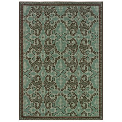 Newfield Aqua Blue/Brown Indoor/Outdoor Area Rug Rug Size: Rectangle 37 x 56