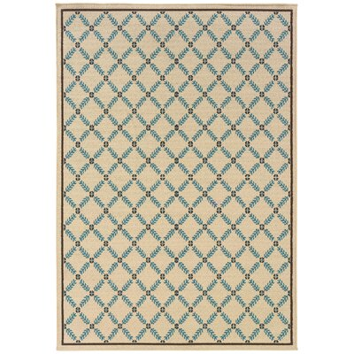 Newfield Ivory/Blue Indoor/Outdoor Area Rug Rug Size: Rectangle 67 x 96