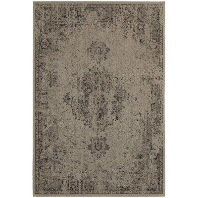 Renaissance Grey/Charcoal Area Rug Size: 5'3
