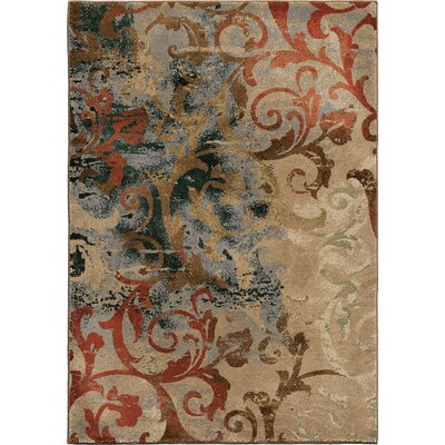 Scroll Mayhem MultiArea Rug Rug Size: 53 x 76